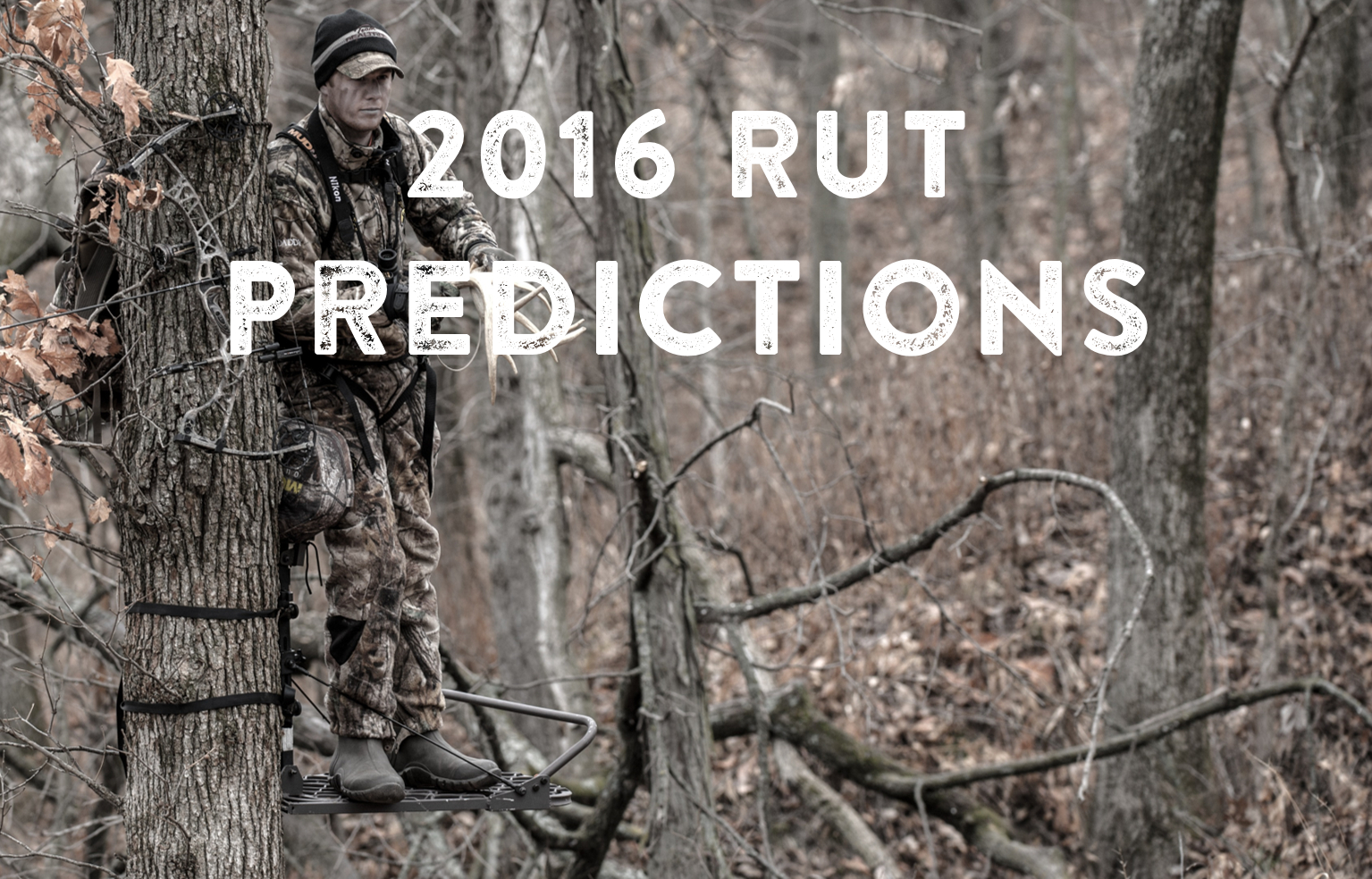 2016 Rut Predictions For Every Theory - Legendary Whitetails