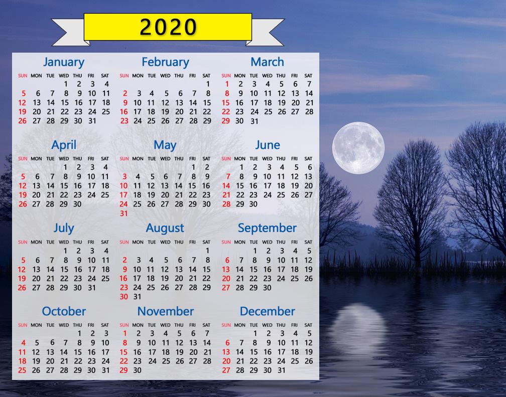 2020 Calendar: Winter Night Sky Full Moon Trees