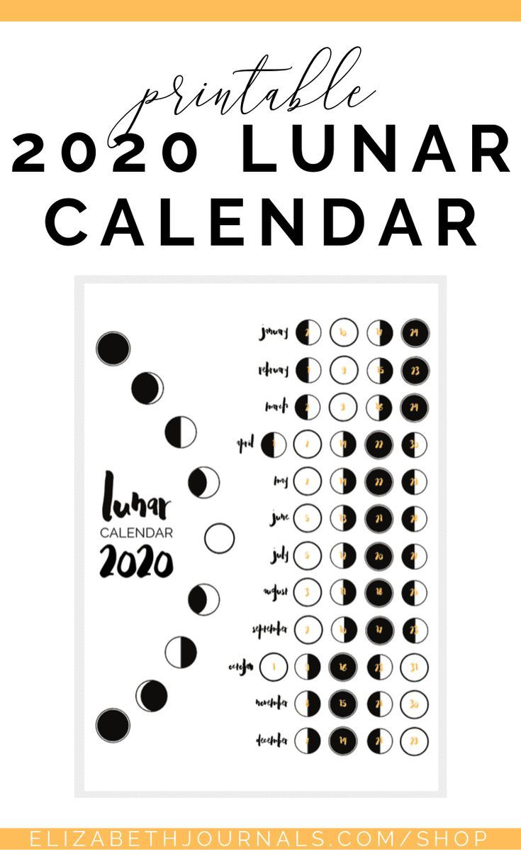 2020 Lunar Calendar Bullet Journal Printable | Bullet