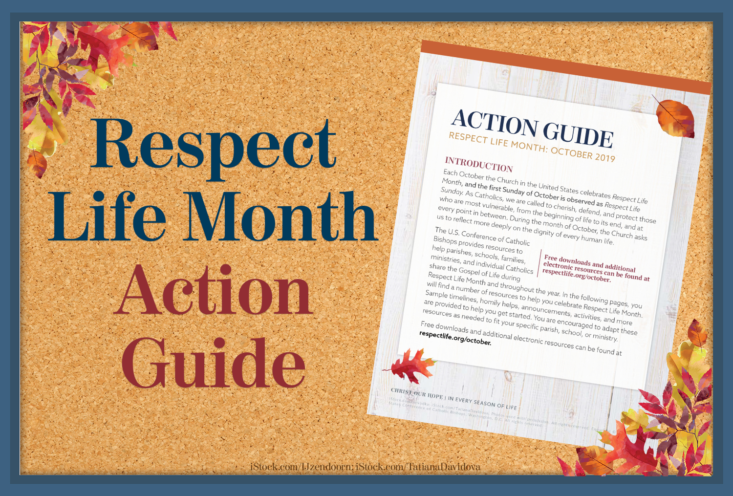 Action Guide: Respect Life Month | Respect Life