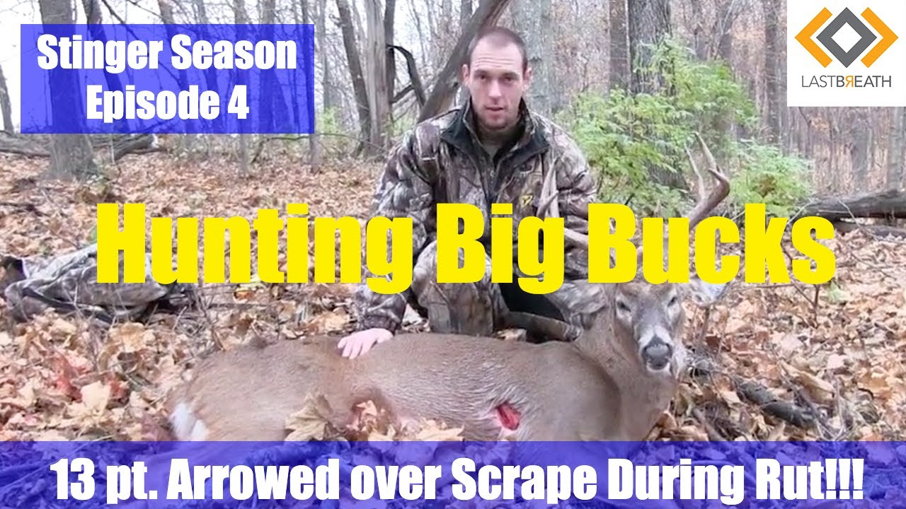 Bowhunting Deer During The Rut-Shooting A Huge 13 Point Buck! Illinois Bow  Hunt For Deer Sse4