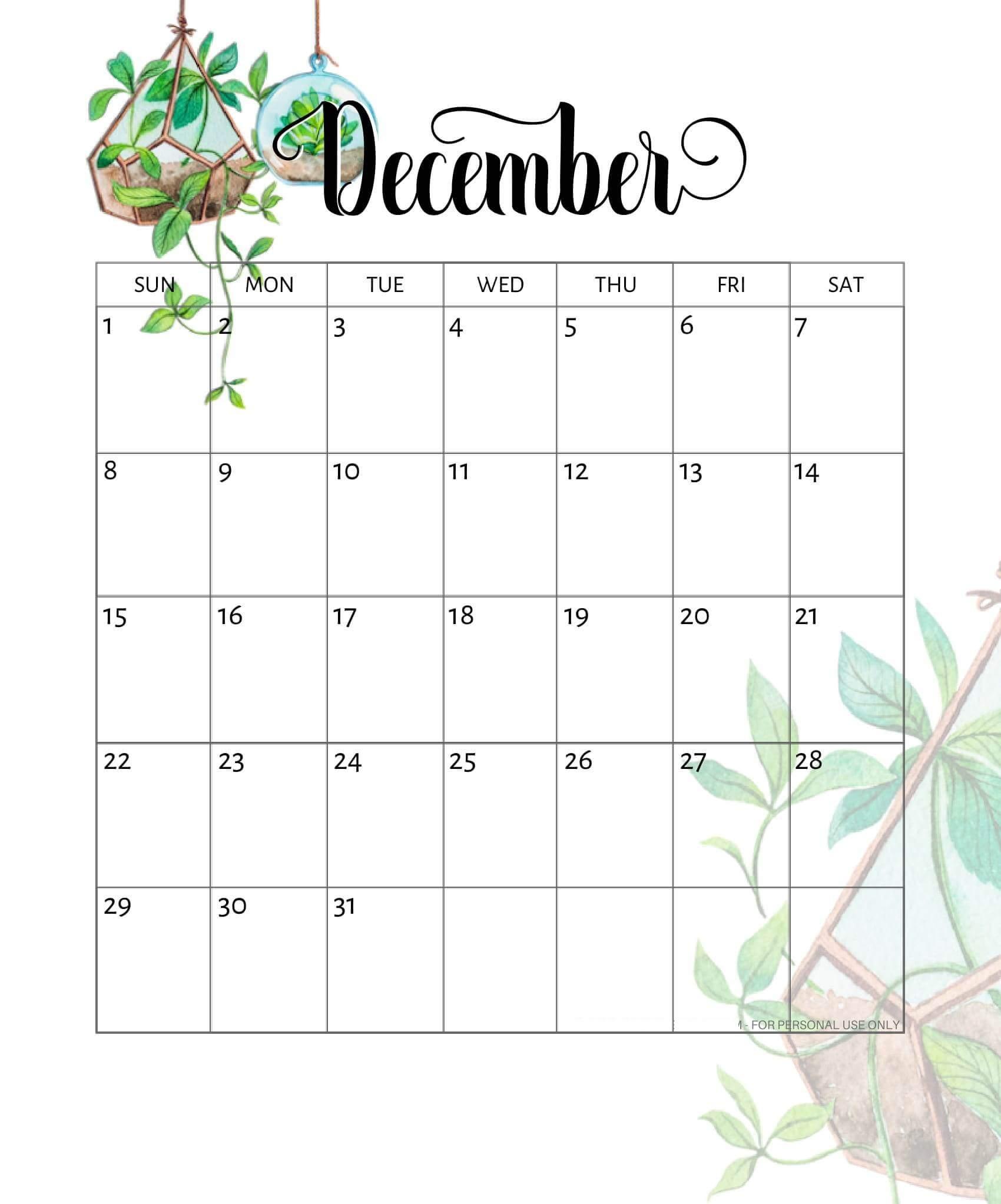 Cute December 2019 Calendar Colorful Design | Free Printable