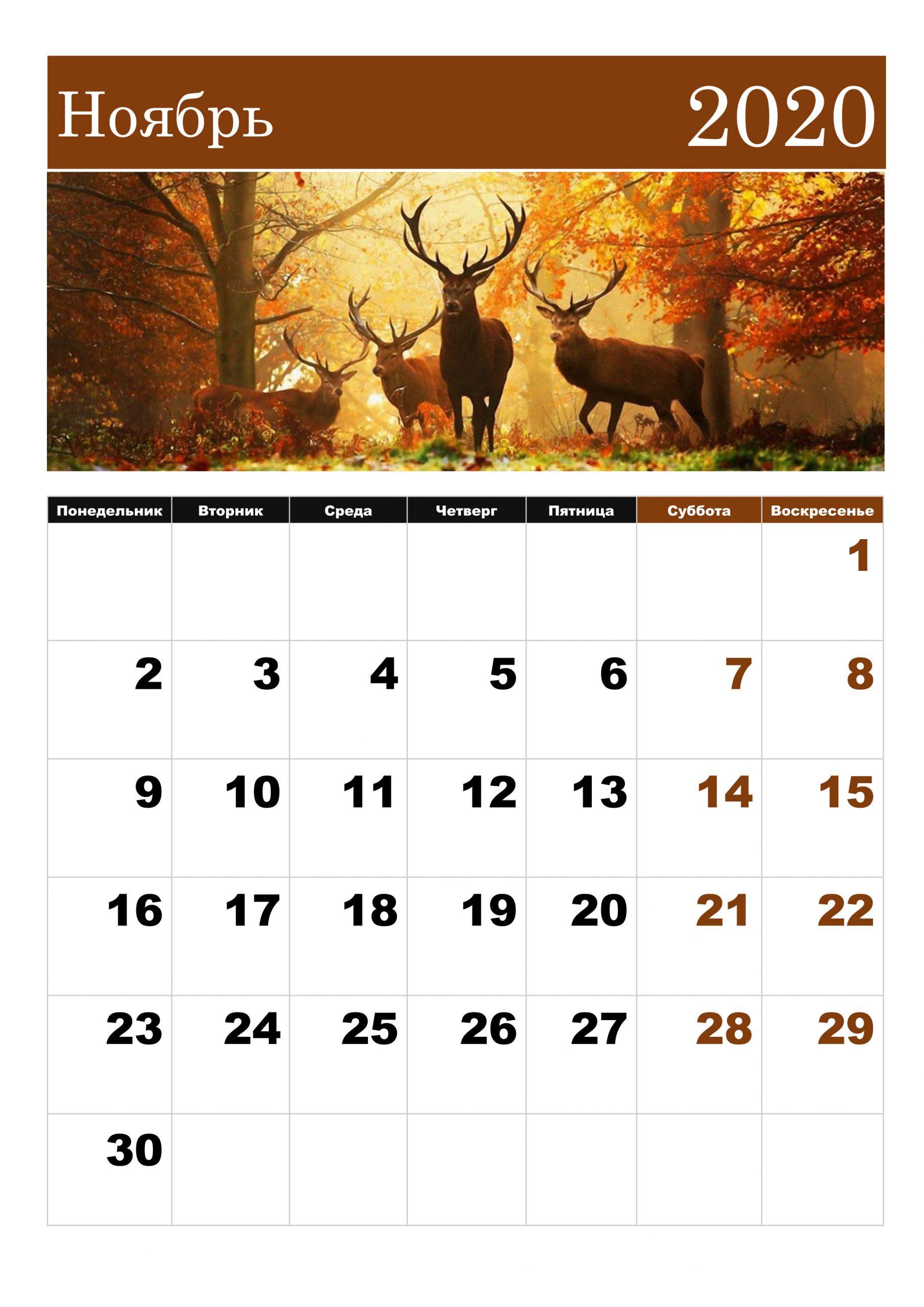 Календарь На Ноябрь 2020: Скачать И Распечатать — 3Mu.ru