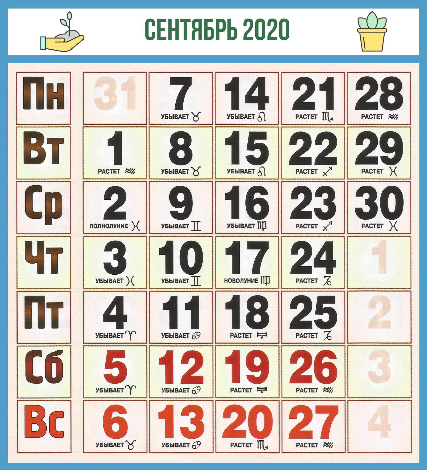 Посевной Календарь Садовода На 2020 Год: Посев, Посадка