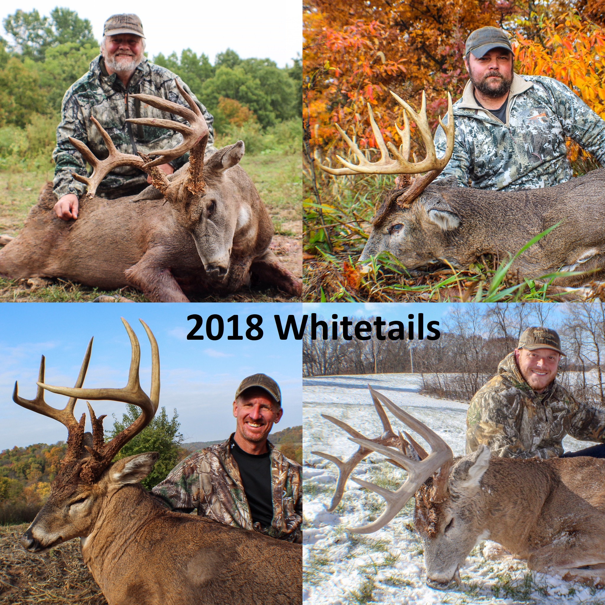 Deer Rut 2020 Illinois | Calendar Template Printable