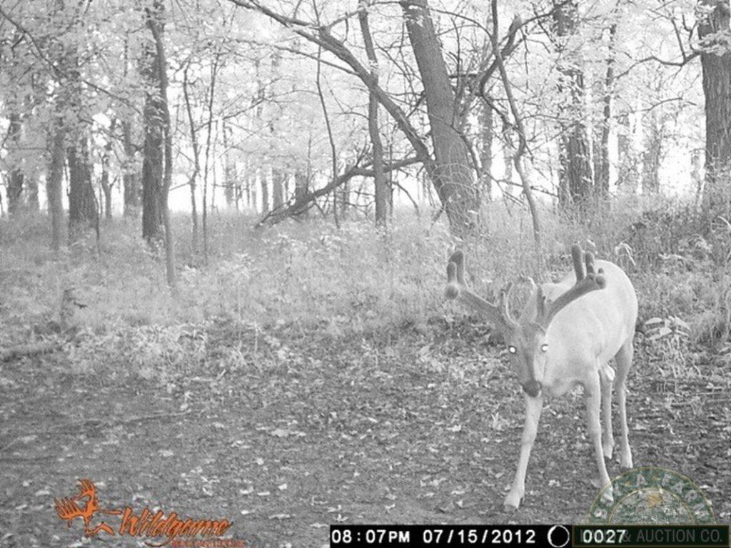 Illinois Deer Rut Progression 2020 | Calendar Template Printable