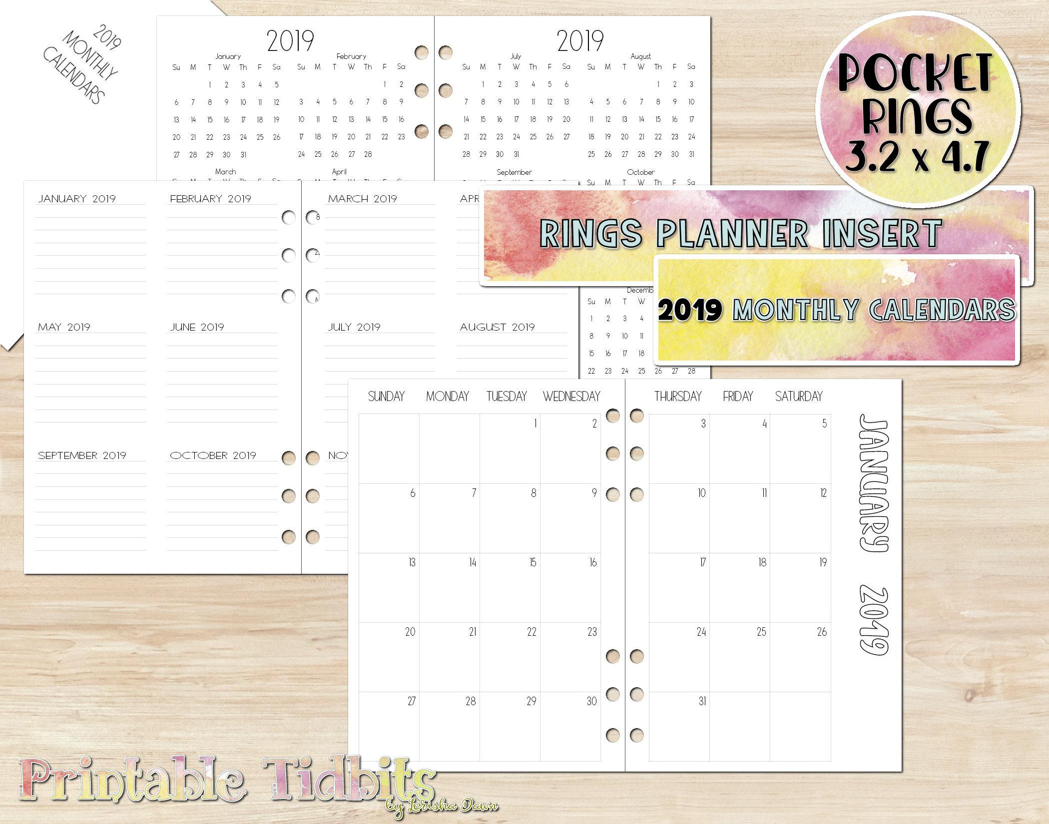 Pocket 2019 Planner Insert - 2019 Calendar - Printable Pocket Planner Insert