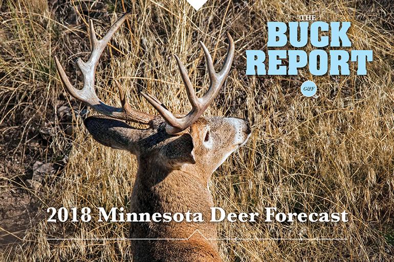 2018 Minnesota Deer Forecast - Game & Fish