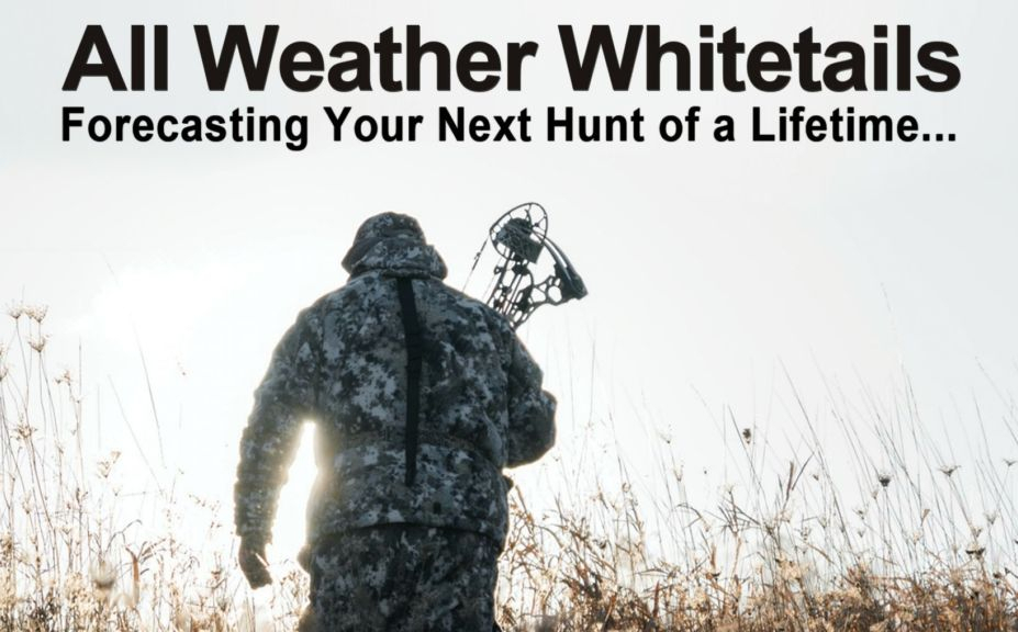 2018 Whitetail Rut Forecast And Hunting Guide | Whitetail