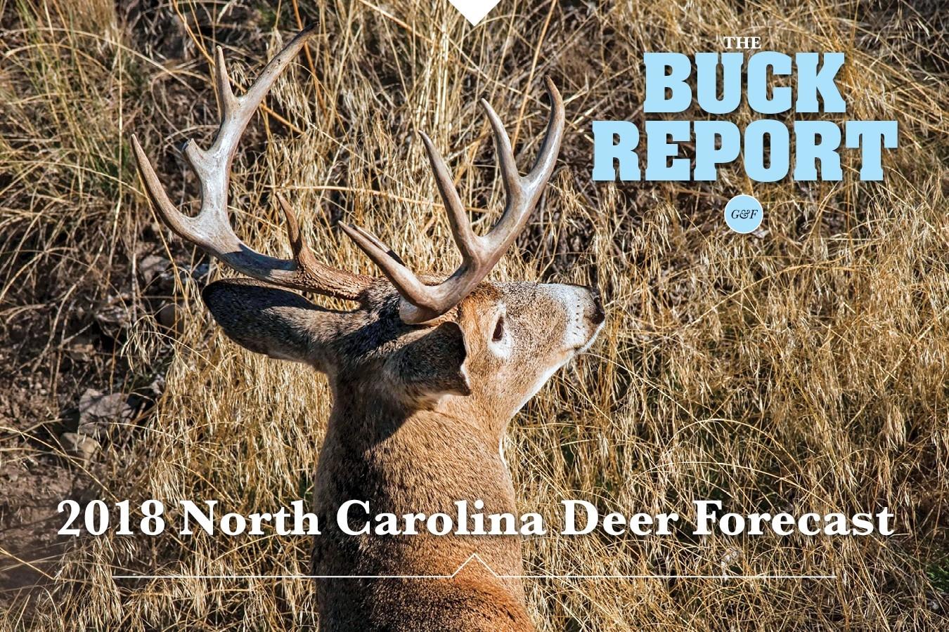 2020 Deer Season Forecast – Template Calendar Design