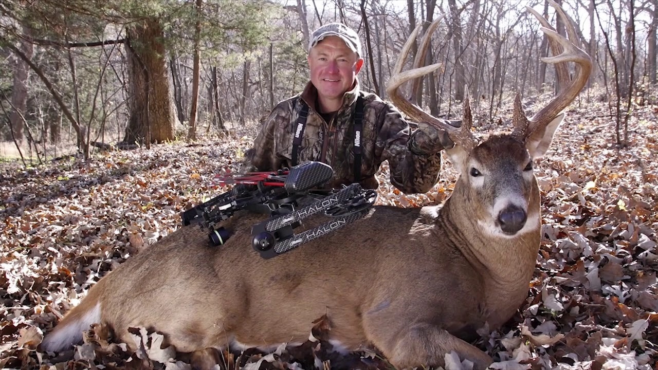 2020 Whitetail Rut Predictions For Pennsylvania – Template