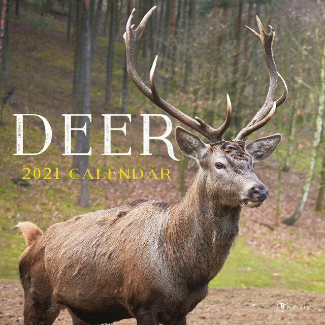 2021 Deer Wall Calendar | Ebay