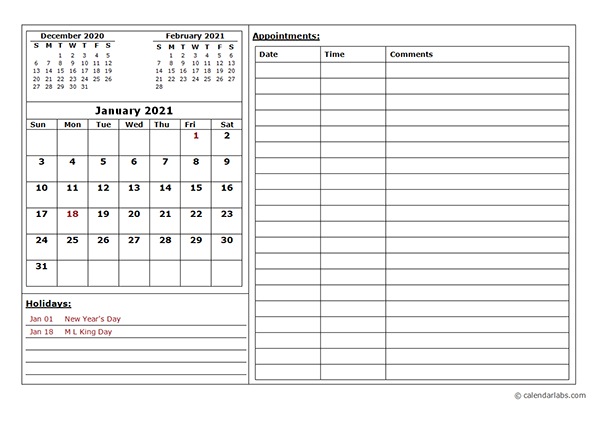 2021 Monthly Appointment Calendar - Free Printable Templates