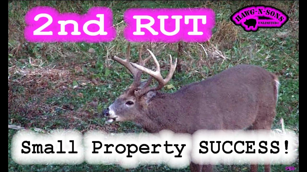 Amazing Deer Hunting Self Video Big Whitetail Bucks Second