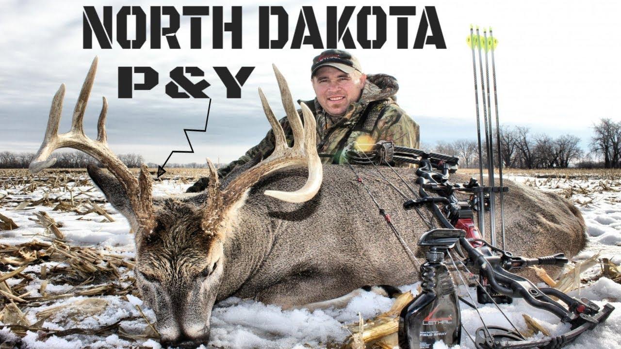 Bow Hunting North Dakota// Peak Rut Bow Hunting - Youtube