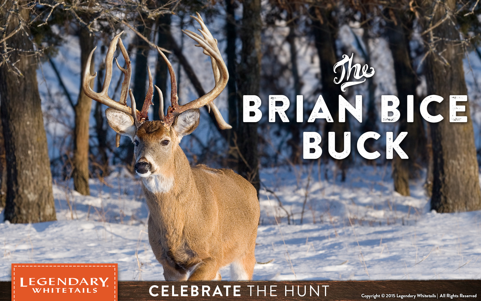 Brian Bice Buck - Legendary Whitetail'S Blog - Legendary
