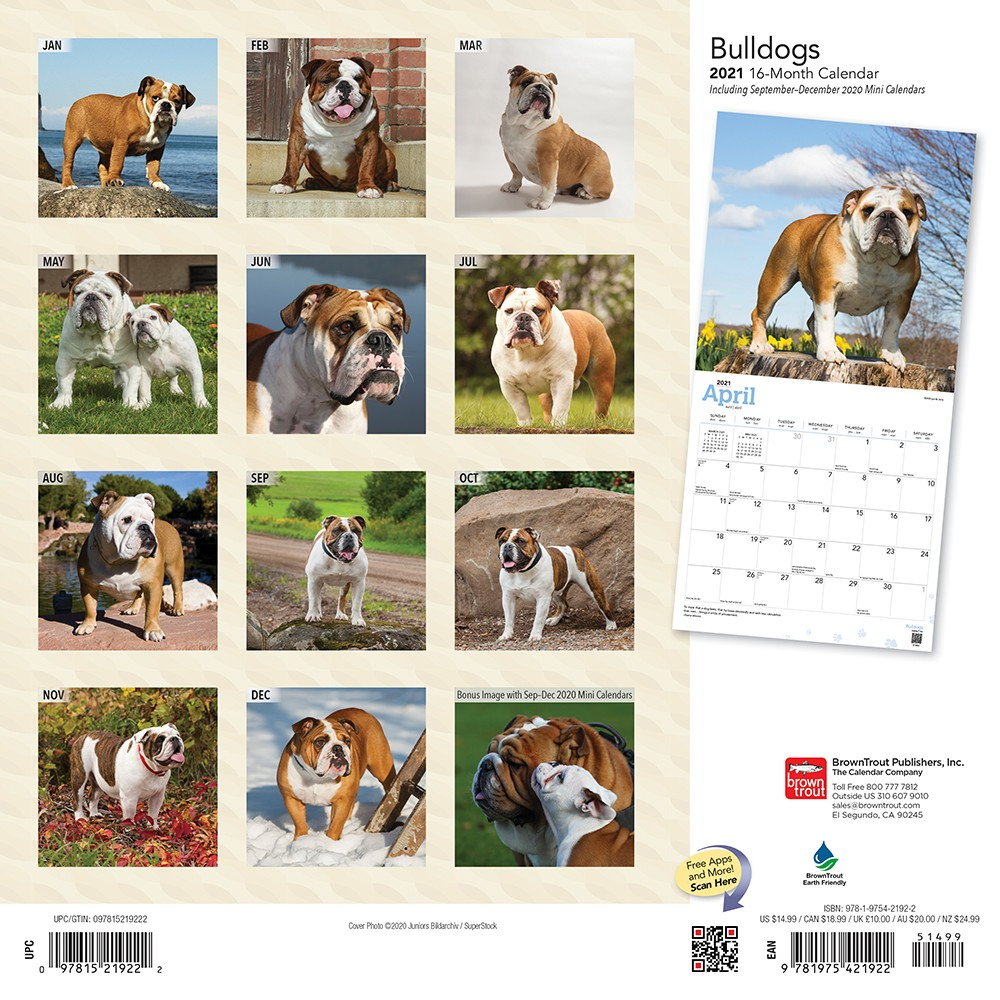 Bulldogs 2021 12 X 12 Inch Monthly Square Wall Calendar