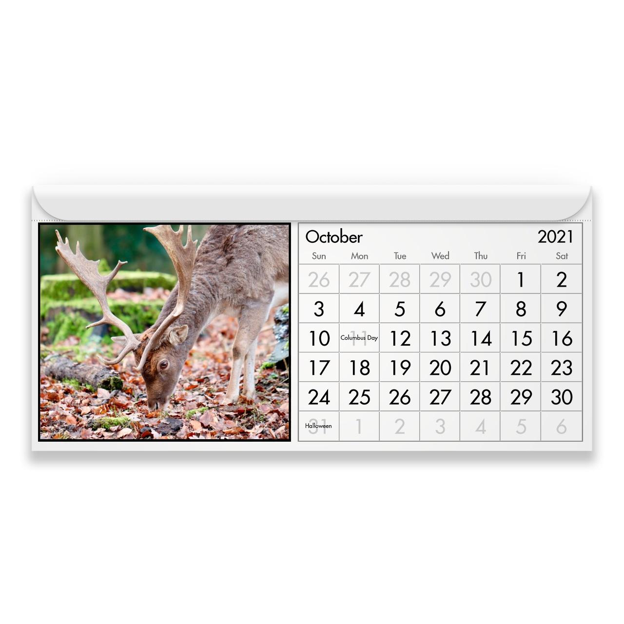 Deer 2021 Magnetic Calendar