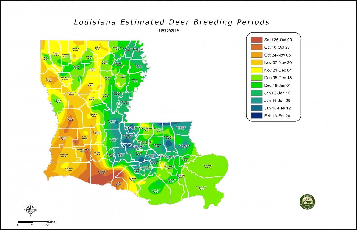 Deer Rut Calendar – Template Calendar Design