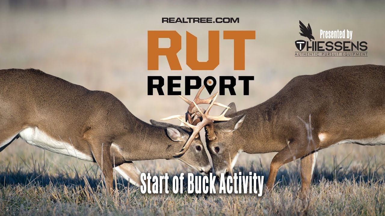 Deer Rut Predictions Illinois | Calendar Printable Free
