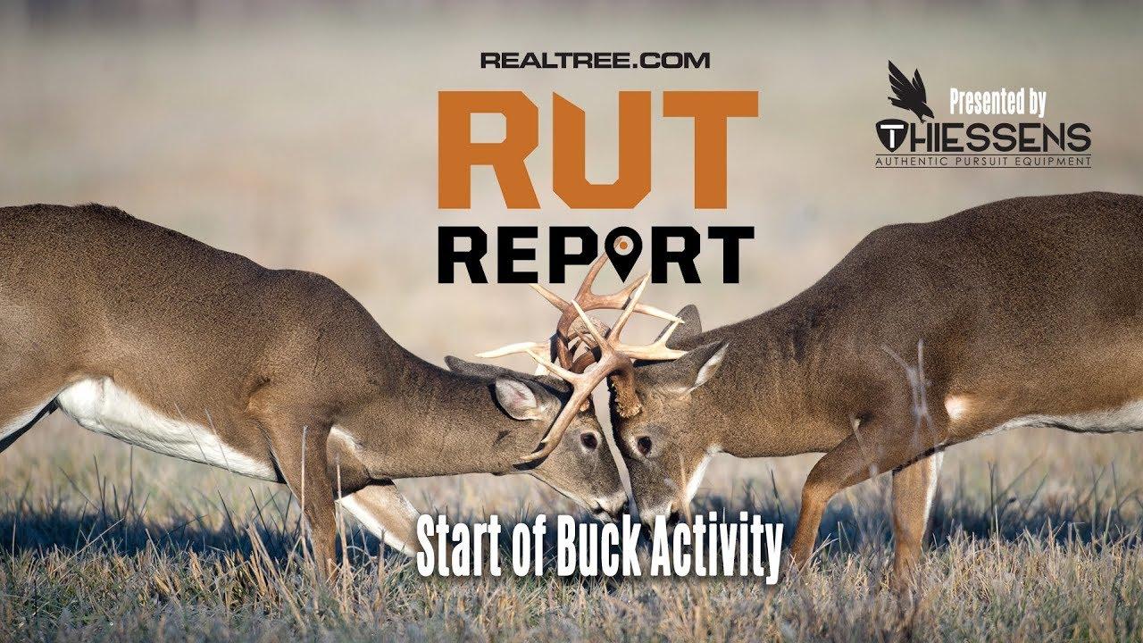Deer Rut Predictions Illinois   Calendar Printable Free