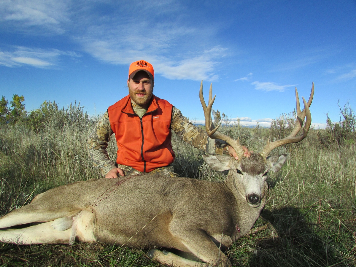 Guided Mule Deer Hunts Wyoming | Bighorn Mountain Outfitters