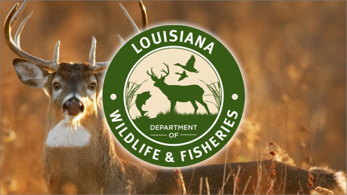 Ldwf Accepting Applications For Deer And Waterfowl Lottery