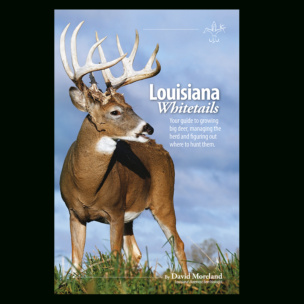 Louisiana Whitetails #Big-Deer #Books #Guide #Herd #Hunt #