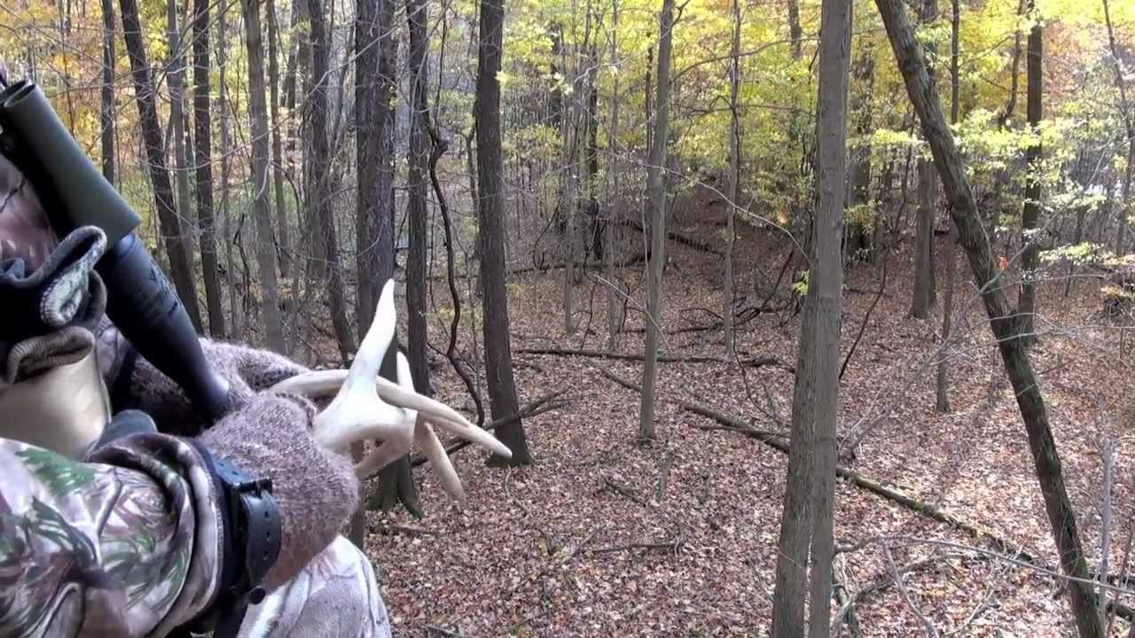 Michigan Whitetail Season Rut - Youtube
