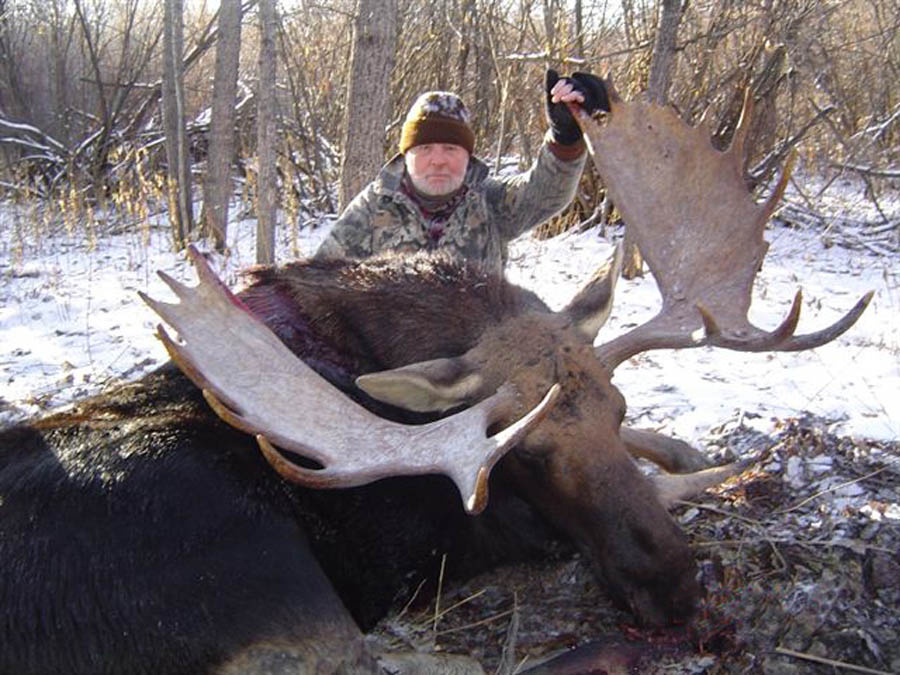 Moose Hunts – North Star Outfitting
