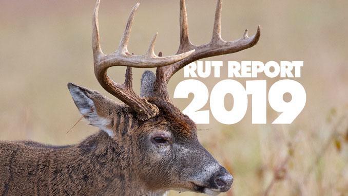 Oklahoma Whitetail Rut Forecast 2019 – Cptcode.se