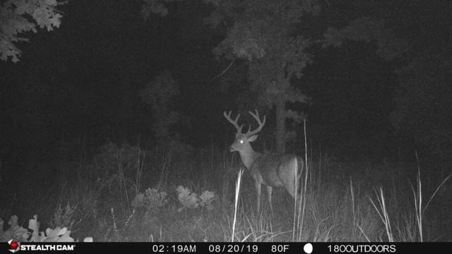 Osage 100 - Oklahoma Lease 2020 - Hunt 180
