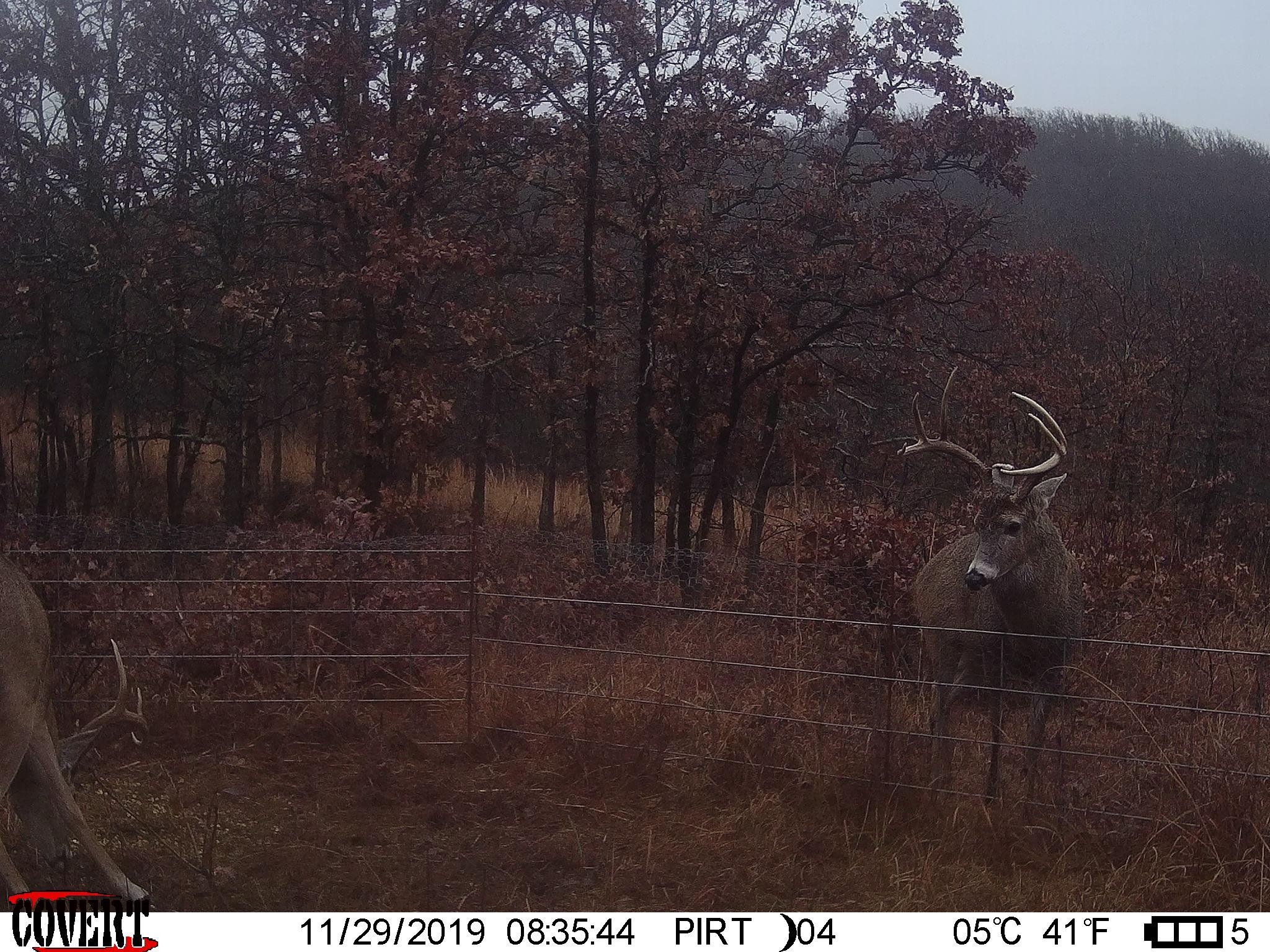 Osage 380 - Oklahoma Lease 2020 - Hunt 180