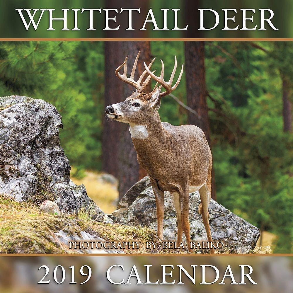 Shopdeerhunting 2020 Calendar Rut Forecast – Template