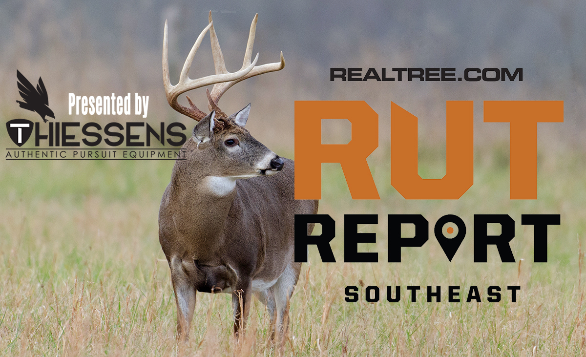 Southeast Rut Report: Expect Major Deer Movement With
