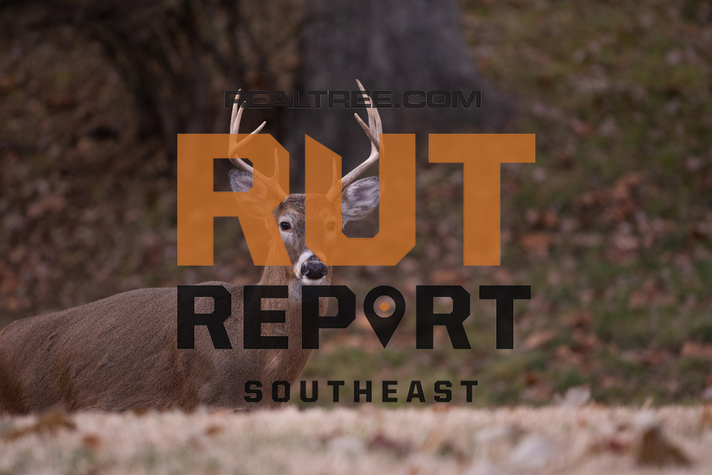 Southeast Rut Report: Select Areas In Alabama, Florida