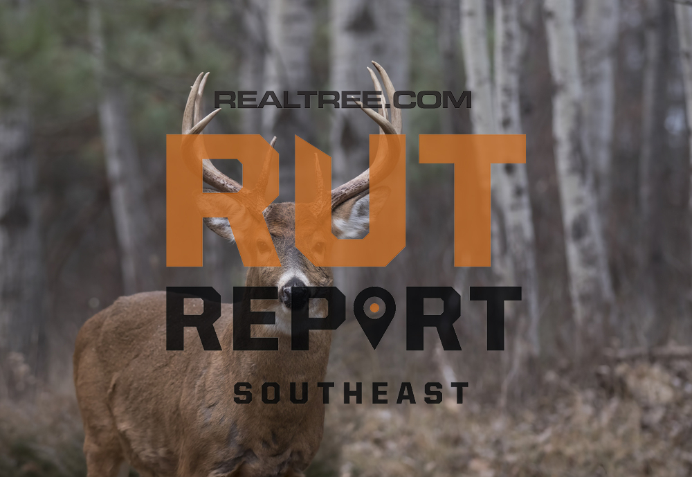 Southeast Rut Report: The Rut Is On Fire In Alabama