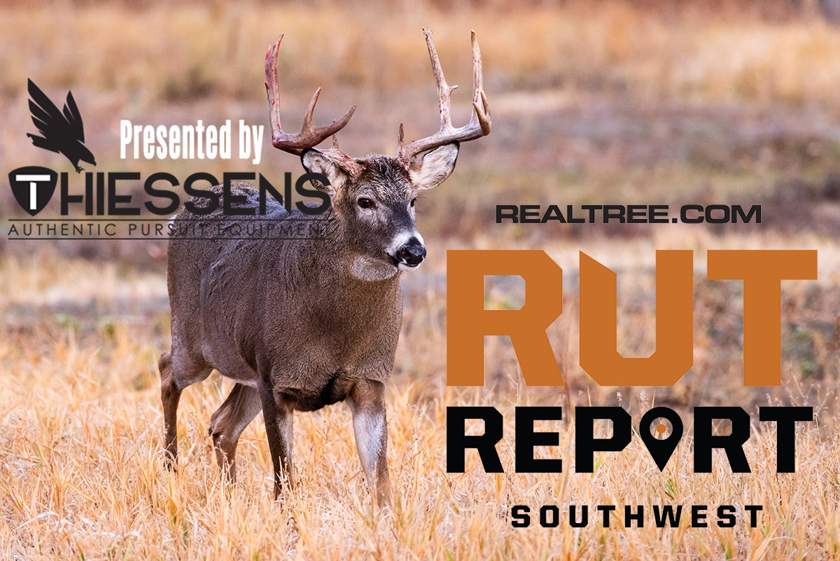 Southwest Rut Report: The Texas Rut Is Red-Hot | Realtree Camo