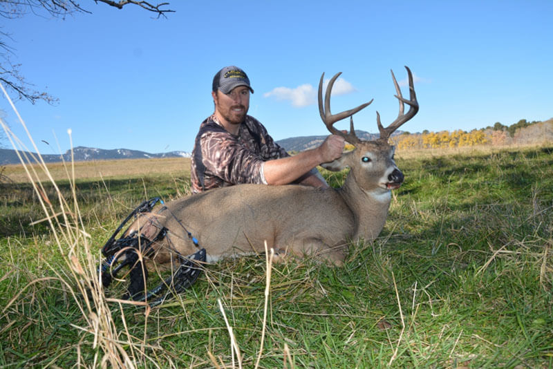 Spot And Stalk Wyoming Whitetail Hunts