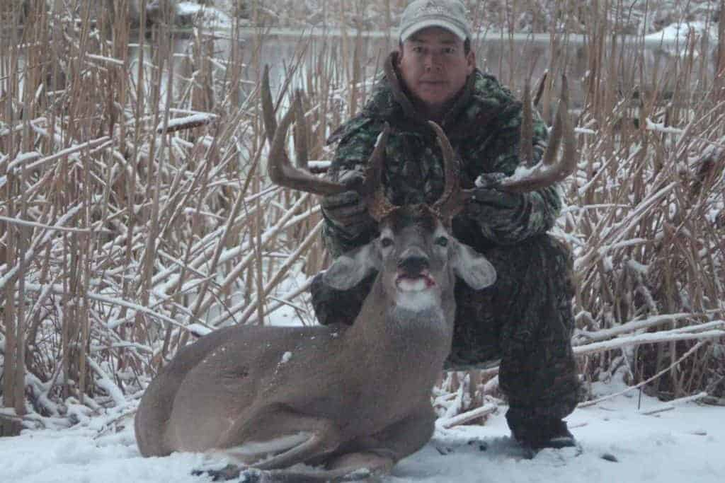 Whitehouse Whitetails - Game Farm And Guide Service