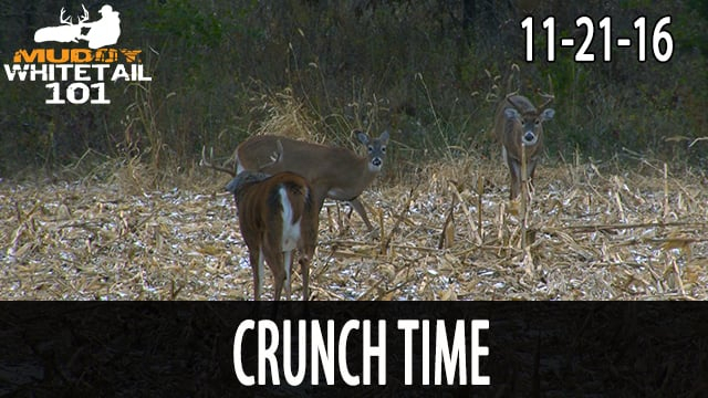 """Whitetail 101 S1 E14, """"Crunch Time"""" 