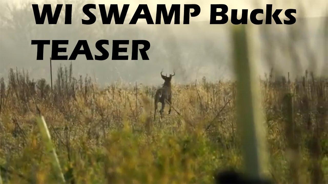 Wisconsin Swamp Bucks During The Whitetail Rut Teaser
