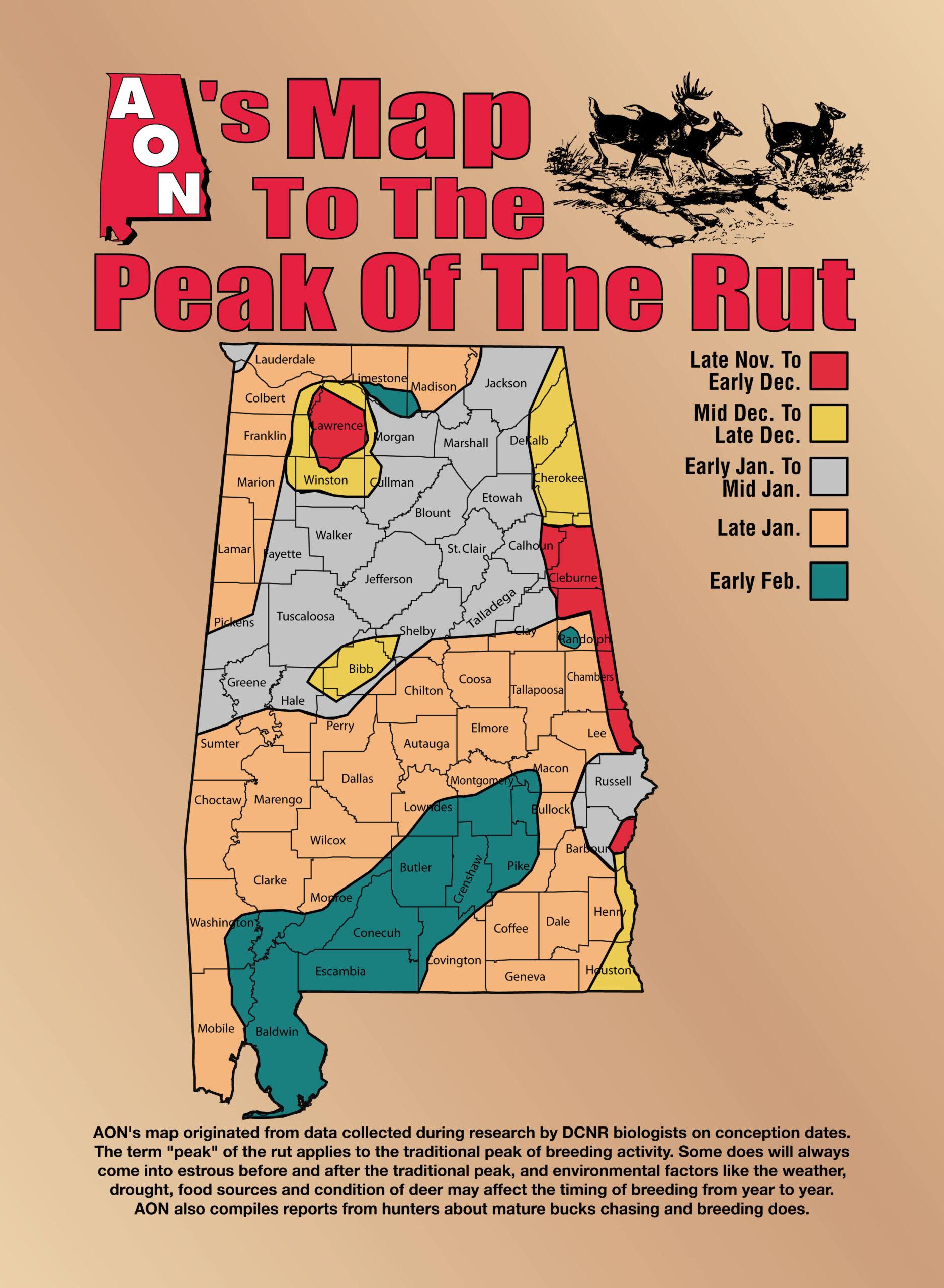 Decoding The Rut