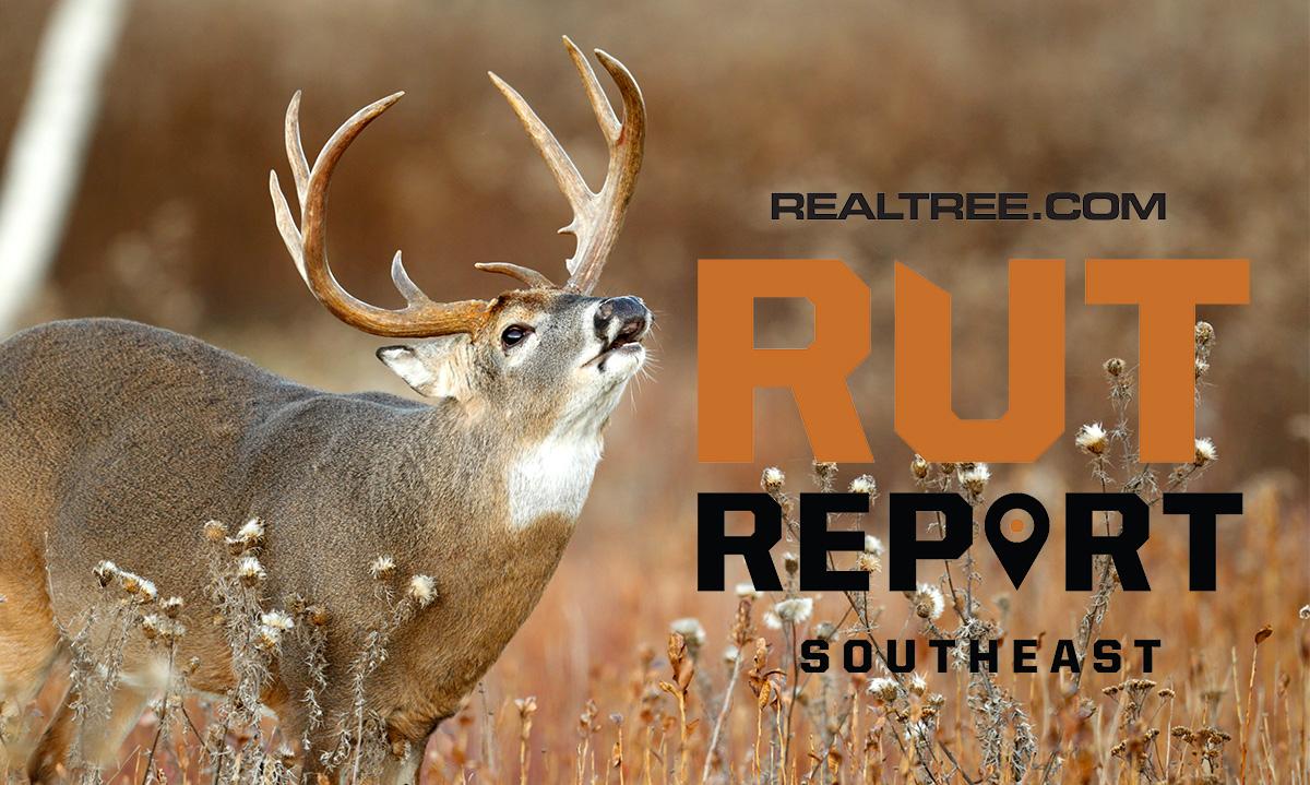 Dec. 13 Southeast Rut Report, 2020