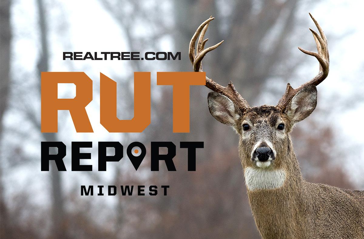 Dec. 4 Midwest Rut Report, 2020