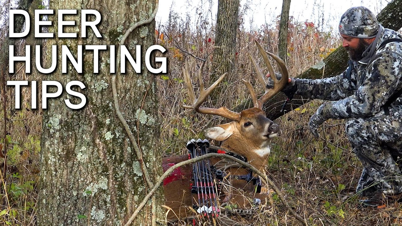 Deer Hunting Tips | October Cold Fronts | Rut Hunting Strategy
