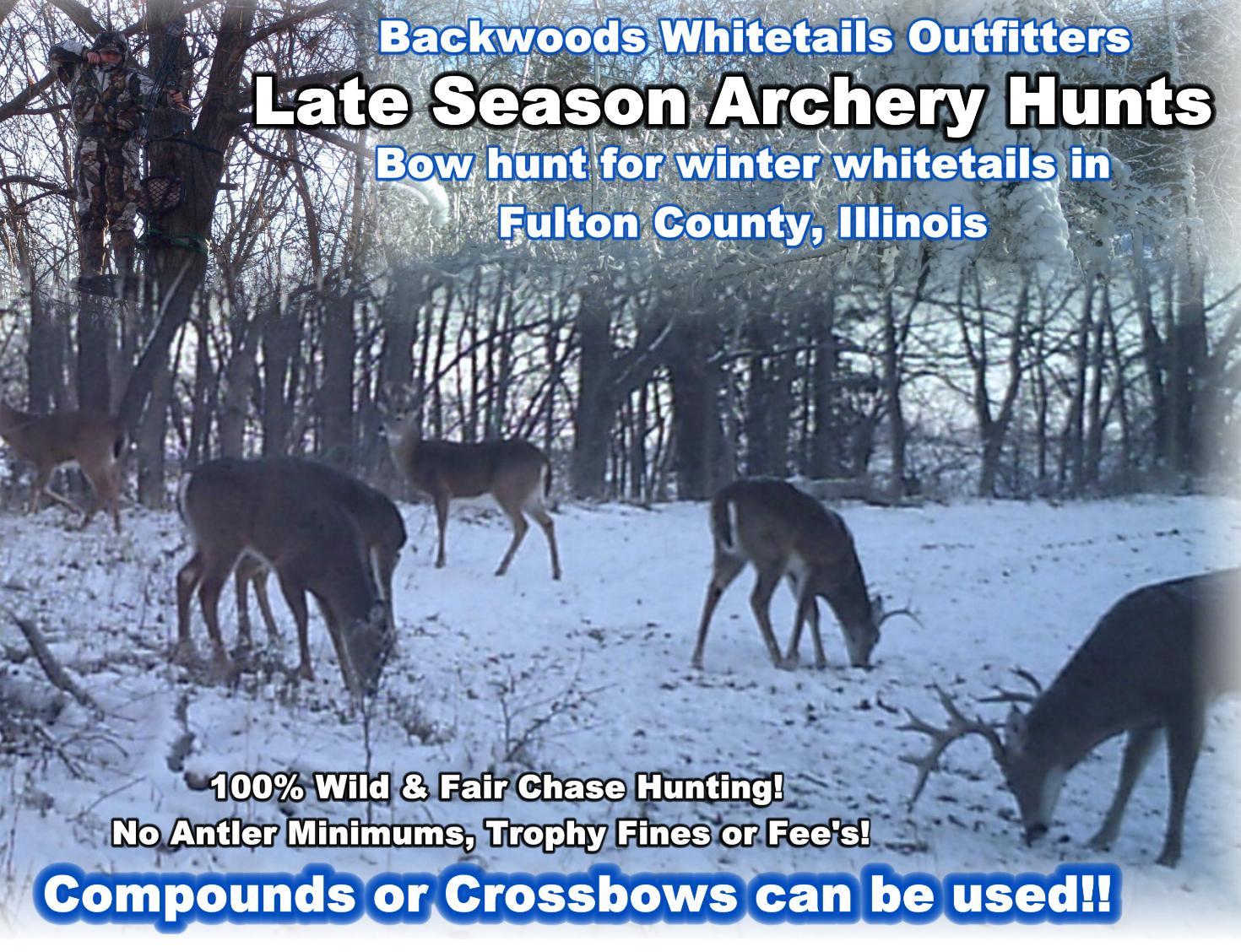 Illinois Post Rut Whitetail Hunts - Backwoods Bowhunting