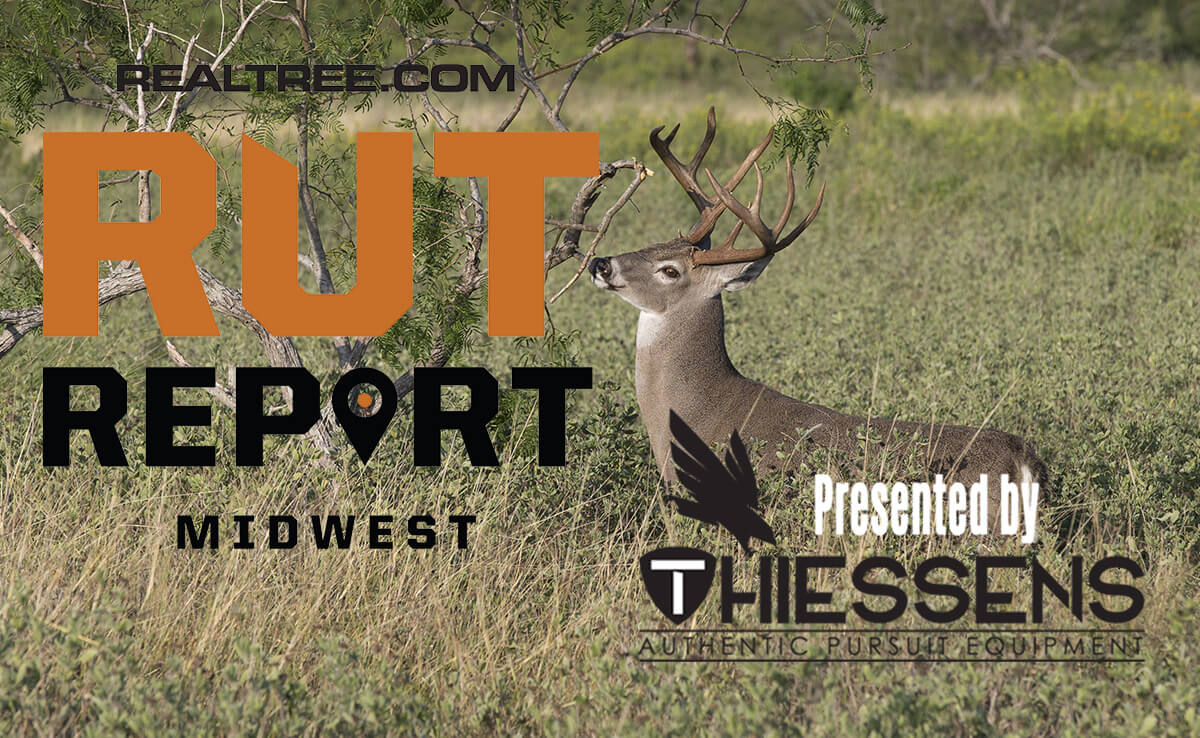 Midwest Rut Report: The Rut Is About To Bust Loose
