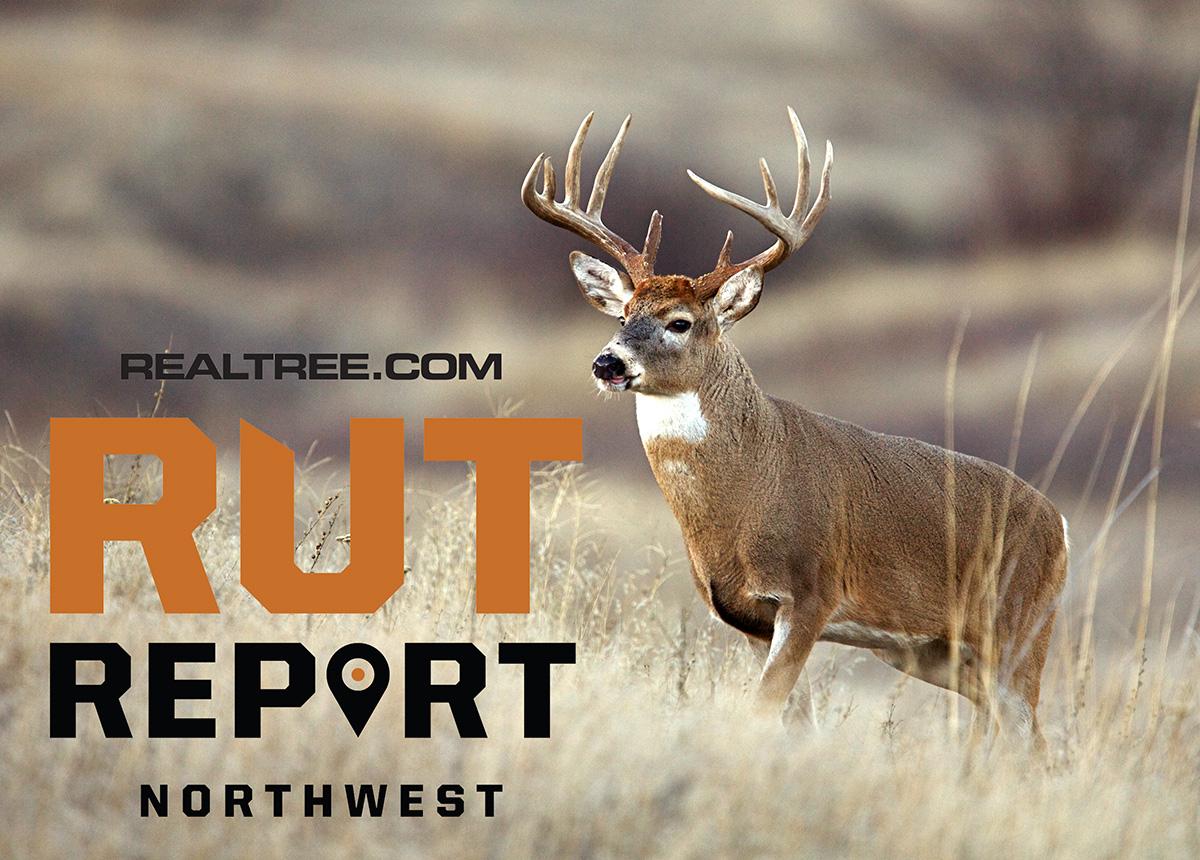 Oct. 23 Northwest Rut Report, 2020