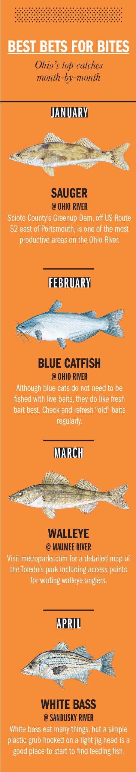 Ohio Fishing Calendar